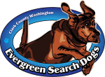Evergreen Search Dogs